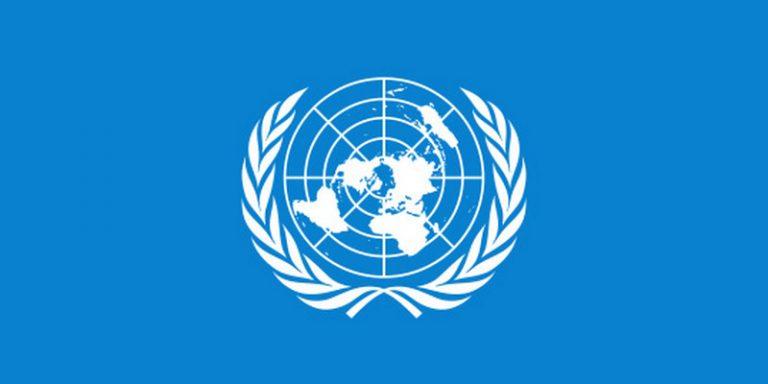 Olimpiadi digitali. Appello all'ONU e alle organizzazioni umanitarie perché sollecitino il Ministro dell'Istruzione