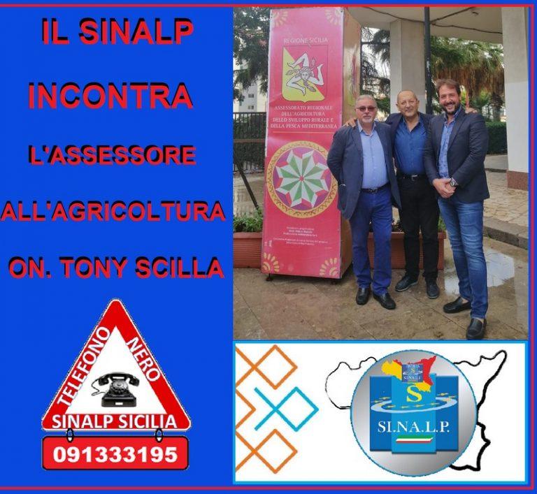 Il Sinalp convocato  dall'assessore all'Agricoltura Tony Scilla  su Ccnl dell'istituto sperimentale zootecnico per la Sicilia